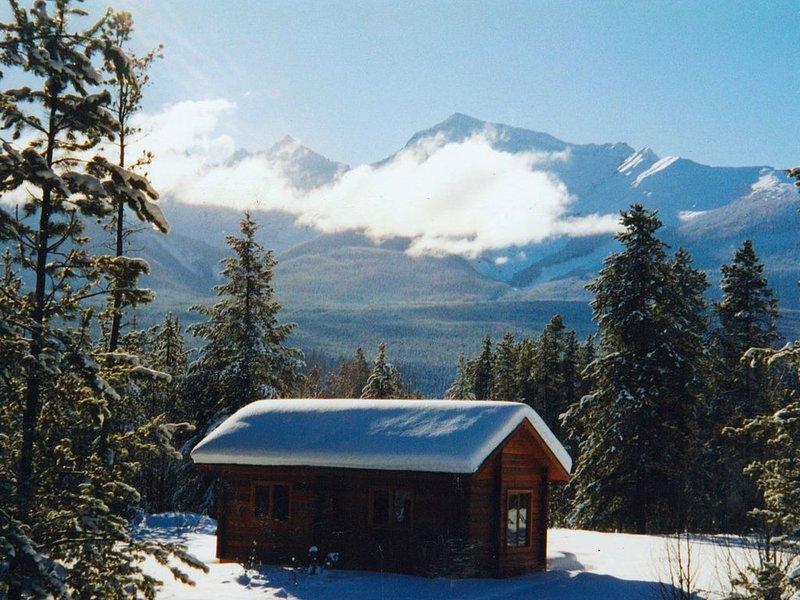 Mica Mountain Lodge & Pine cabin, at Mt Robson Provincial Park, near Jasper Nati, holiday rental in Valemount