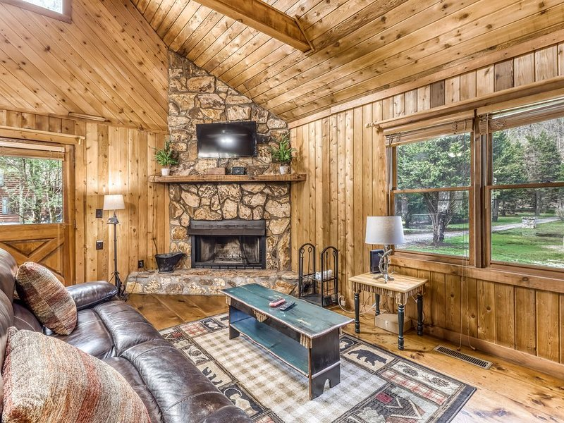 Waterfront cabin w/ private dock & hot tub, wood-burning fireplace, & swing!, casa vacanza a Mineral Bluff
