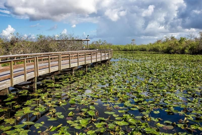 Everglades National Park is only steps away