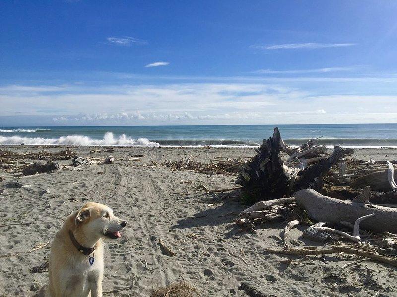 Cameron's Beach Front, alquiler de vacaciones en Greymouth