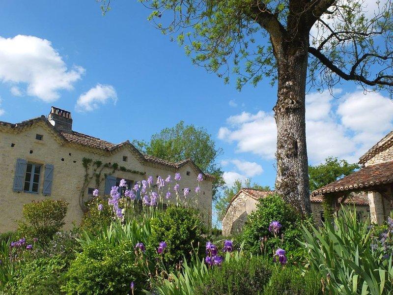 Maison de caractère avec piscine, Ferienwohnung in Saint-Daunes