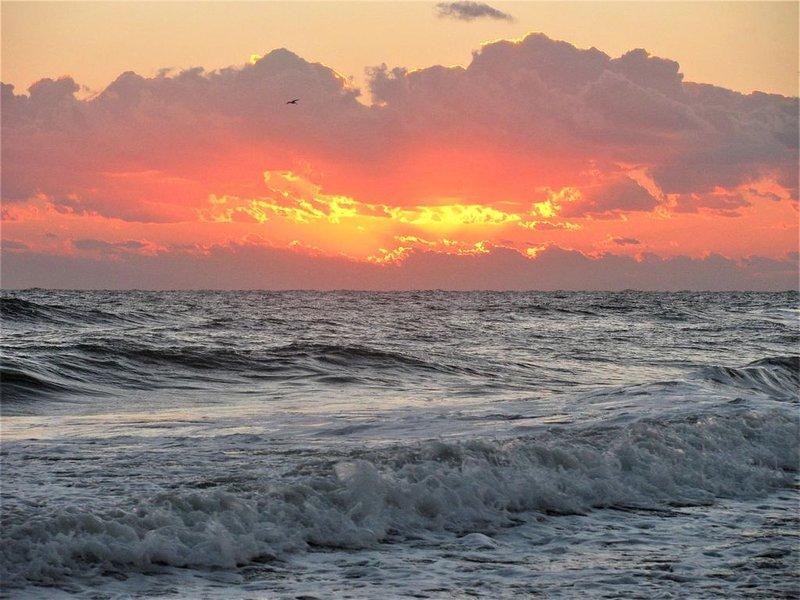 Paradise Found!  ~It's~  here at 765 Cinnamon Beach Way, location de vacances à Palm Coast