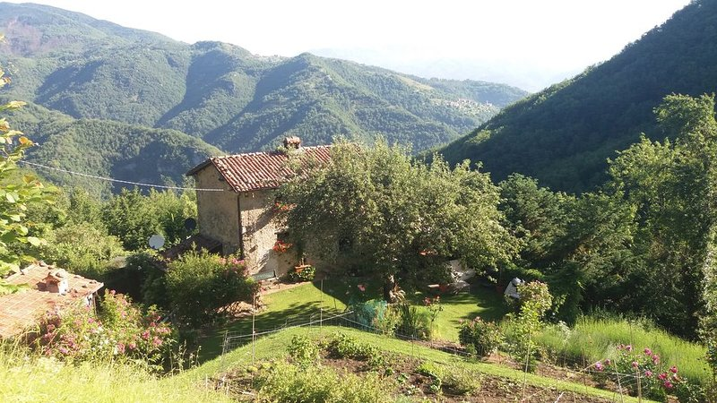 Authentic Italian house set in a peaceful forest with great views, holiday rental in Vergemoli