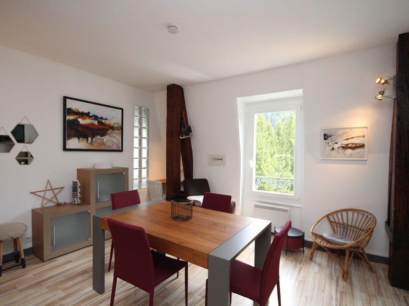 LE MONT-DORE Splendide T2 avec vue montagne, wifi et sauna, holiday rental in Le Mont-Dore