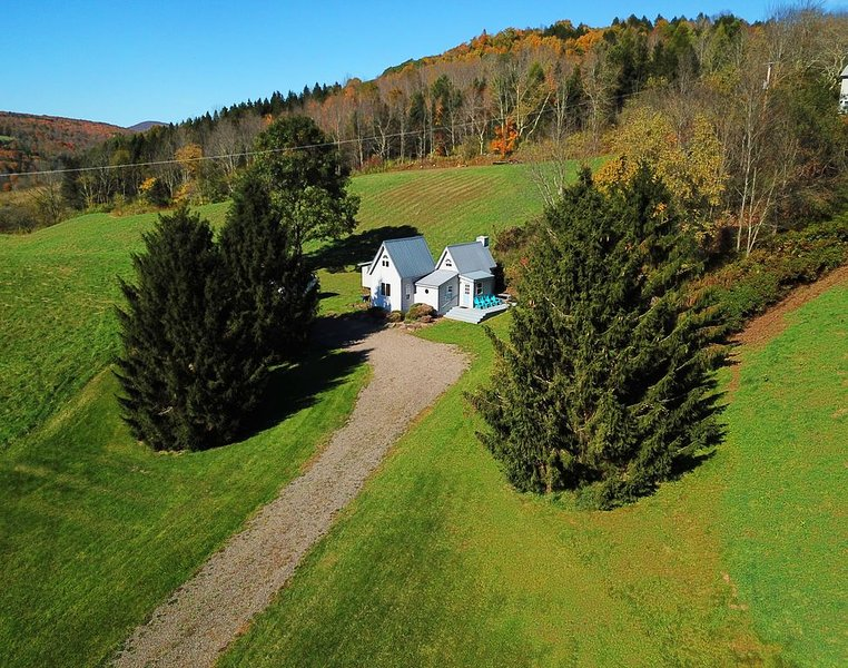 Meadowlark, a delightful and unique Catskill Mountain Cottage. Extraordinary, aluguéis de temporada em Halcottsville