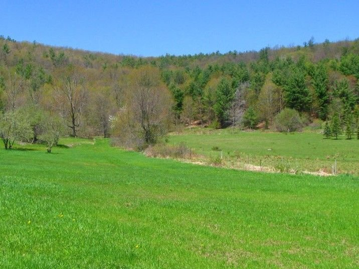 Tentrr Signature Site - Hessian Hill Farm, vacation rental in Gallupville