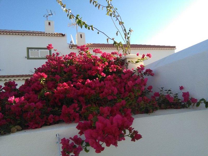 Abades Sun House -  Tenerife. Islas Canarias. Vv A-38-4.000724, vacation rental in San Miguel de Tajao