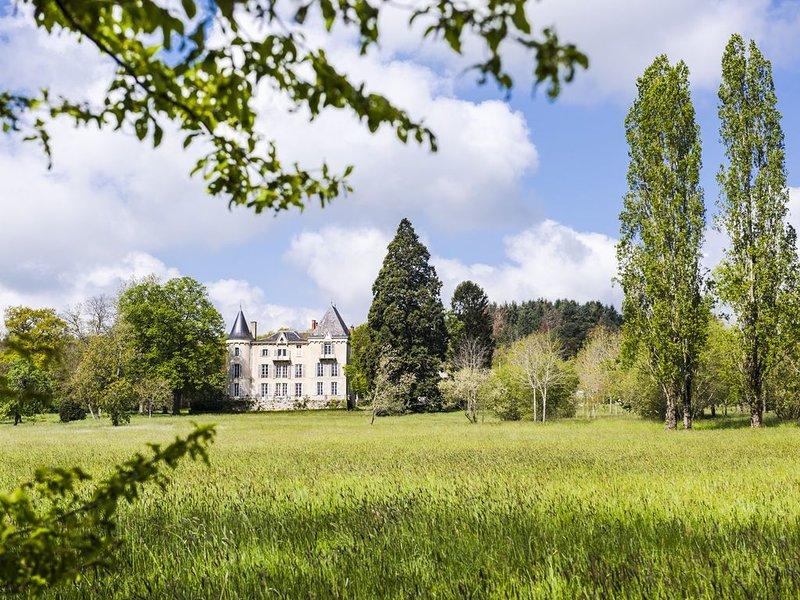Château avec parc et piscine à coté  de la Sioule et des volcans, location de vacances à Chouvigny