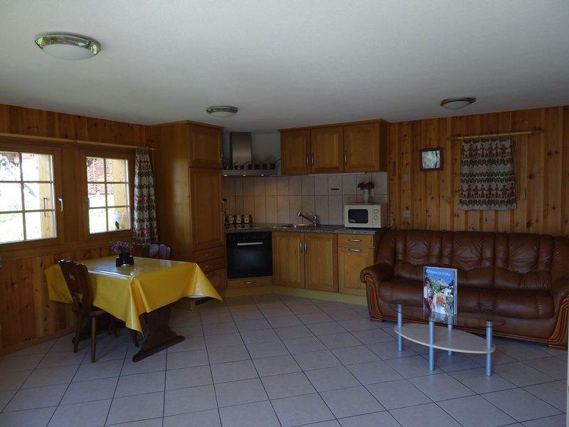 Appartement au calme JARDIN et vue  DENT BLANCHE, aluguéis de temporada em Evolene