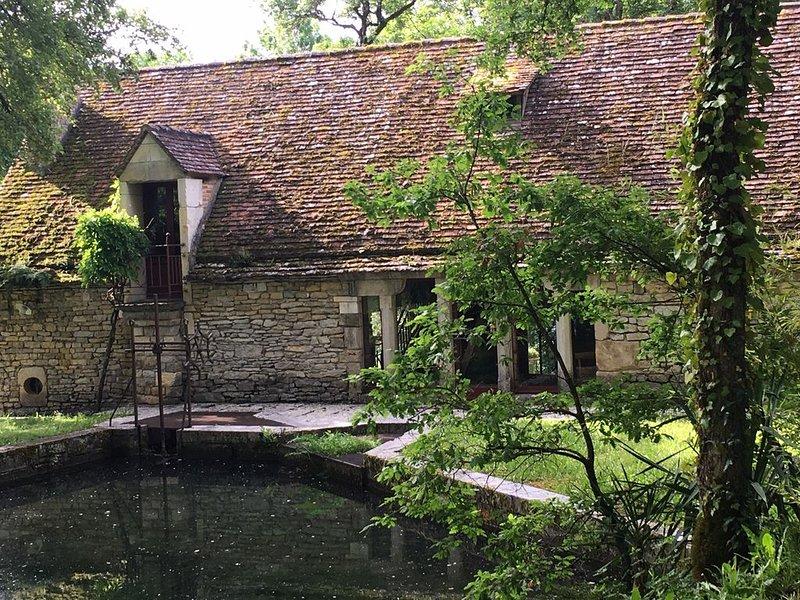 Le superbe moulin du Château Lagrézette du XVème , un havre de paix et de tranqu, holiday rental in Nuzejouls