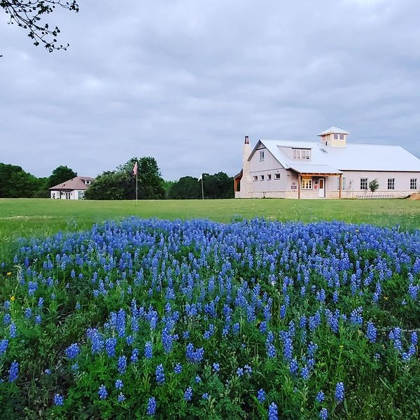 Brenham-Home/Barn amazing place to stay!  Completed 2019, holiday rental in Brenham