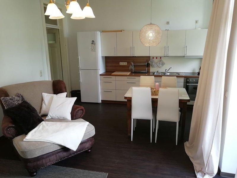 Moderne 2, 5 Zi Wohnung stadtnah, zentral, ruhig & im 'Grünen' Dresden, holiday rental in Niederpoyritz