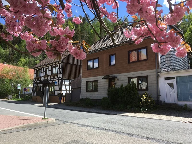 Nettes Appartment in eigenem Haus, holiday rental in Zorge