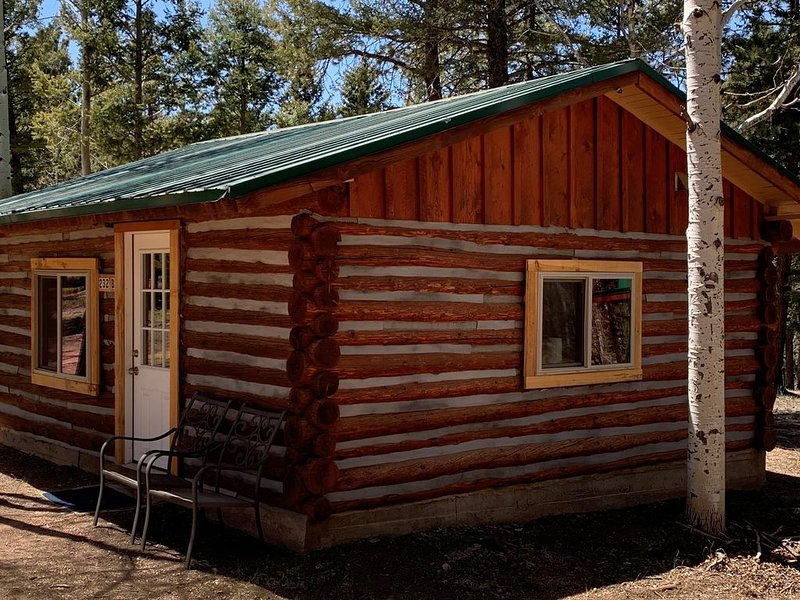 Best L'il Bunkhouse on 40 Wooded Acres, holiday rental in Lake George
