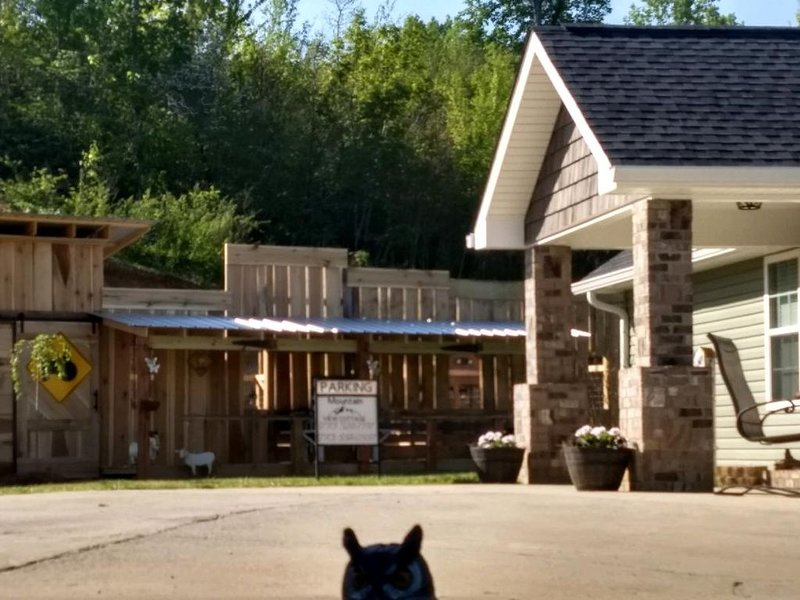 Mountain View Cottage, vacation rental in Trenton