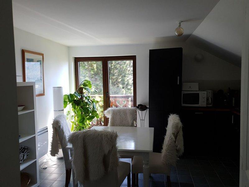 Appartement stylé dans chalet, Val d'Abondance-Portes du Soleil/2, holiday rental in Vacheresse