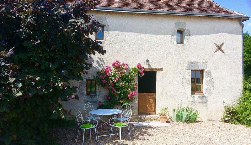 Gîte rural avec piscine en Touraine, location de vacances à Monthodon