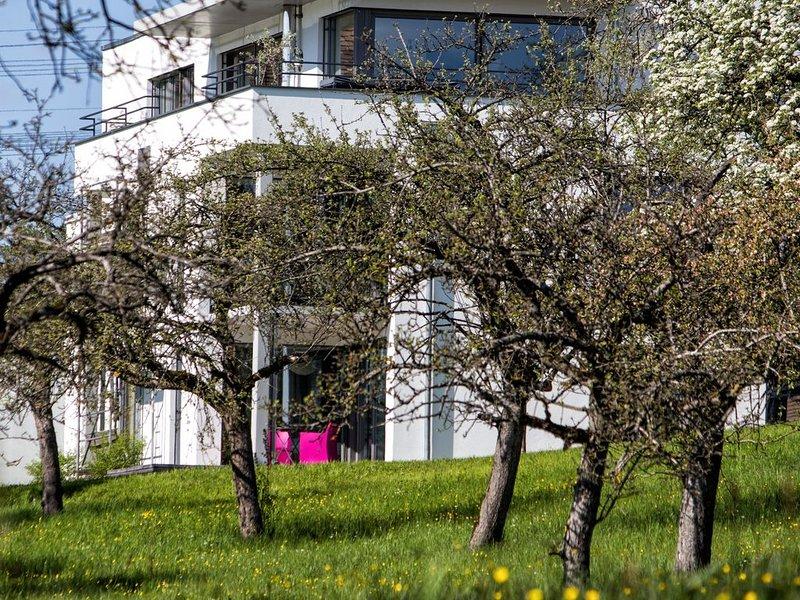 Ferienwohnung Engen für 1 - 2 Personen mit 1 Schlafzimmer - Ferienwohnung, holiday rental in Neuhausen am Rheinfall
