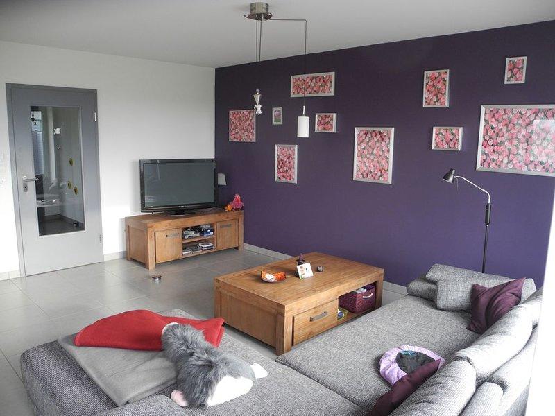 Ferienhaus Oesterdeichstrich für 1 - 9 Personen mit 3 Schlafzimmern - Ferienhaus, holiday rental in Albersdorf