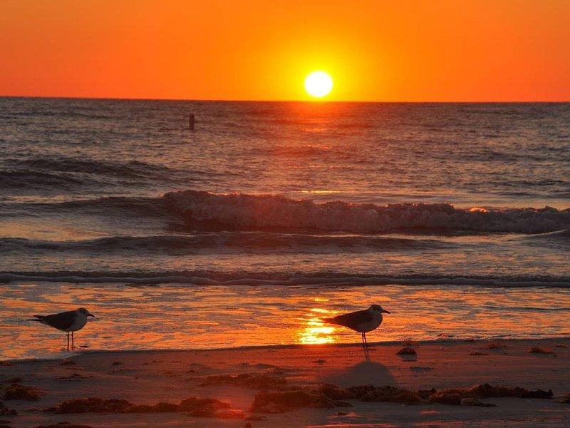 Sandy Shores Villa near Sieta Key and other beaches, casa vacanza a Gulf Gate Estates