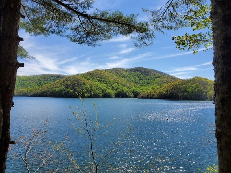 Beautiful Lake Nantahala Home-Lakefront with Amazing Views-Private Dock, holiday rental in Topton