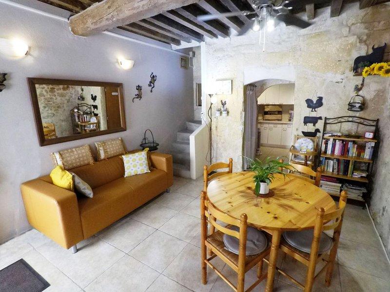 BELLE  MAISON / CENTRE  HISTORIQUE D' ARLES, vacation rental in Arles