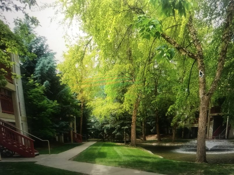 3 BR Fabulous Group/Family Getaway - Fully Furnished - Central Boise - D107 – semesterbostad i Tetonia