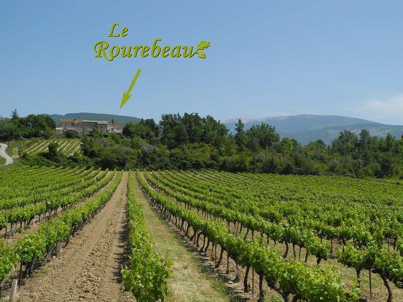 Grande maison avec flair en Drôme provençale, holiday rental in Mollans sur Ouveze