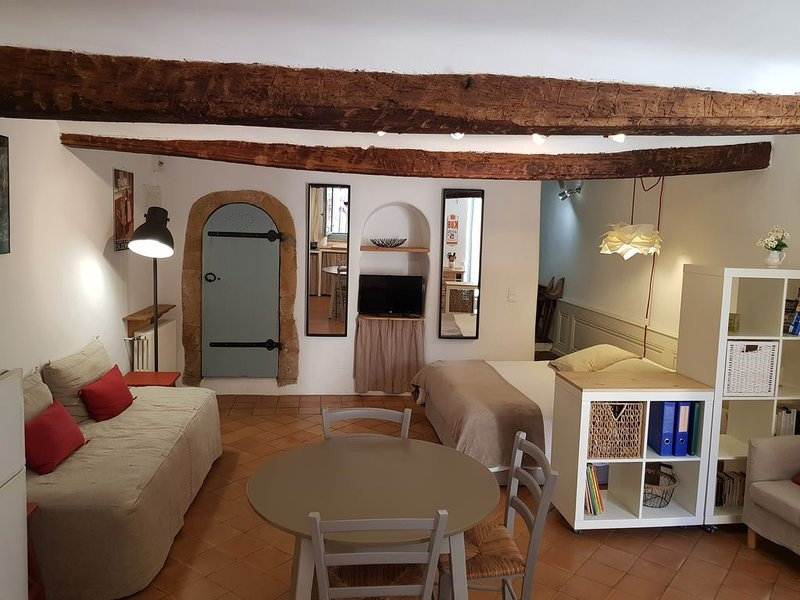 studio en plein coeur village provençal, holiday rental in Rians