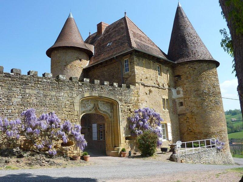 Château du 11 ème siècle - Bourgogne du Sud / 7 Pers-charme-confort-authenticité, vacation rental in Saint-Igny-de-Vers