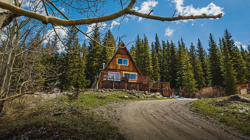 Cozy Alma A Frame Cabin near Hoosier Pass *15 miles to Breckenridge*Pups welcome, holiday rental in Alma