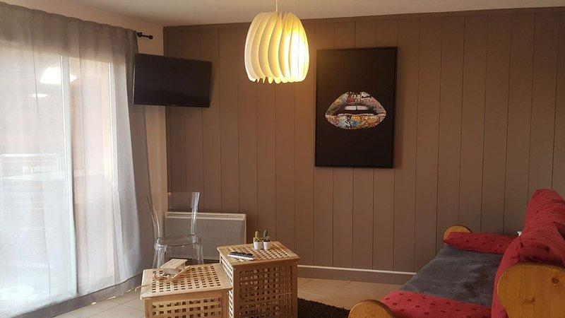 Bel appartement   standing 6 / 8 pers, Pied de pistes - Départ rando à Serre Che, holiday rental in Saint-Chaffrey