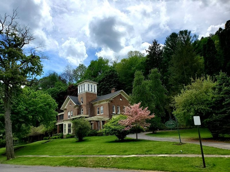 Nationally Historic Cook Mansion in Montour Falls, NY, holiday rental in Elmira