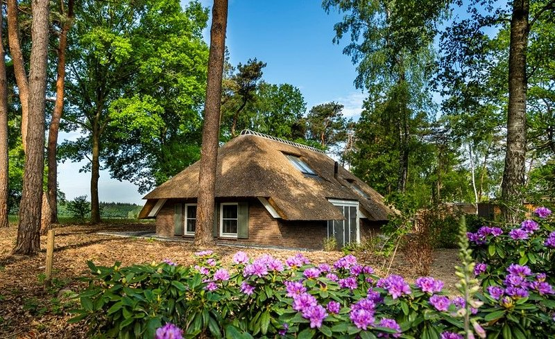 Sprielderbosch 20 Luxushaus in waldreicher und ruhiger Umgebun, vacation rental in Kootwijk