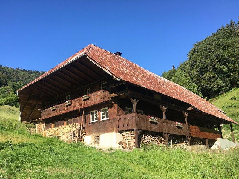 Ferienhaus Urlaub im Schwarzwald in einem großen Bauernhaus, holiday rental in Britzingen