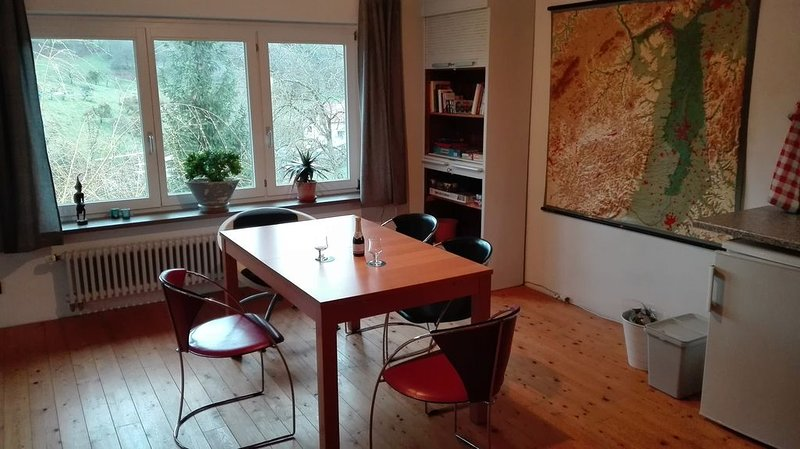 Großes Apartment mit Panoramablick in Hammelbach/ Odenwald, holiday rental in Strumpfelbrunn