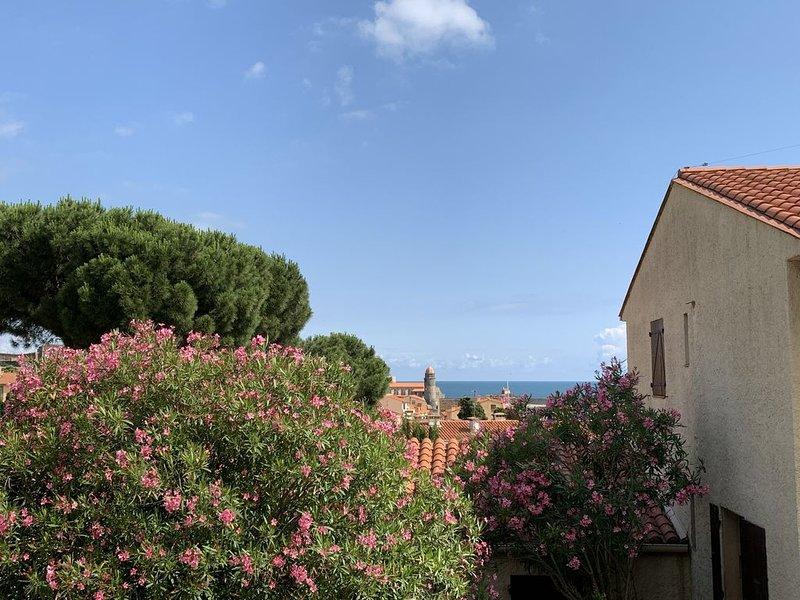 T2 50m2 vue baie de collioure, vacation rental in Collioure