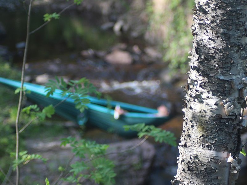 River Run: Secluded Riverside A-Frame Two Miles West Of Grand Marais, casa vacanza a Grand Marais
