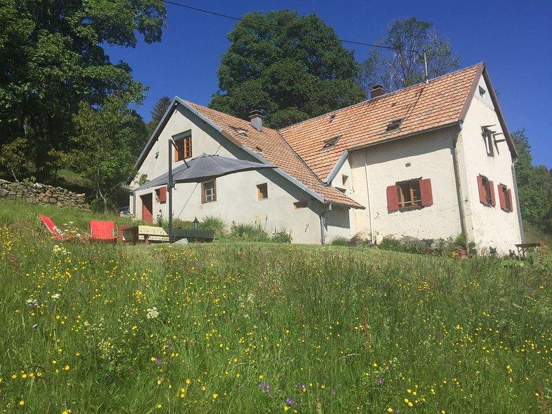 Gite 'Les primevères du Hilsen', holiday rental in Sondernach
