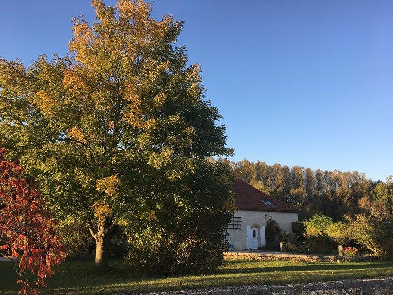Très grand gîte familial entre Reims et Epernay, au cœur de la Champagne UNESCO – semesterbostad i Marne