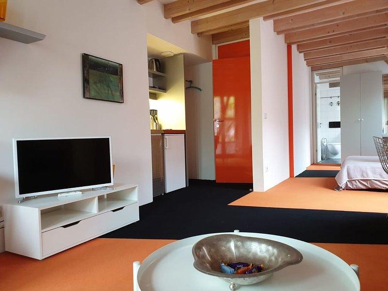 Loft Appartement am Fuße der Schwäbischen Alb, location de vacances à Dettingen an der Erms
