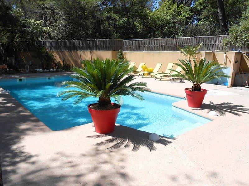 Villa sous les pins avec pisicne privée, holiday rental in Mazan