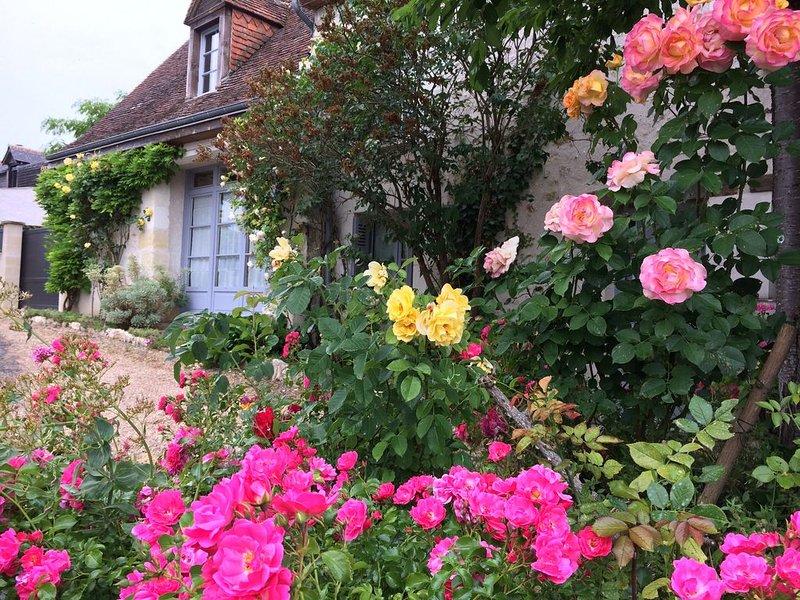 GITE , MAISON de CHARME CLASSÉE 3 ETOILES à AMBOISE surplombant la Loire, casa vacanza a Nazelles