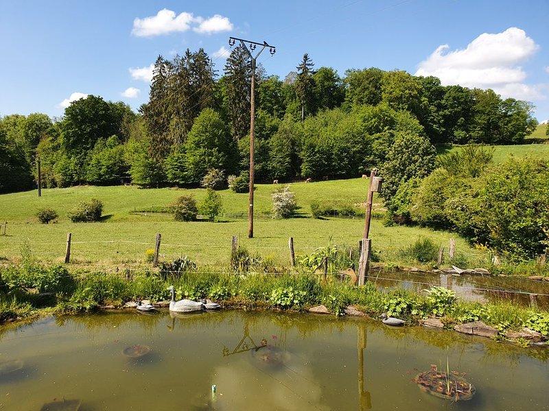 Ferien im Bergischen Land, Rhein-Sieg-Kreis, vacation rental in Ruppichteroth