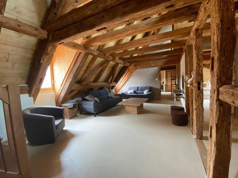 Nouveauté 2020 - Chaleureux gîte avec terrasse et jardin - jusqu'à 14 personnes, vacation rental in Soultzmatt