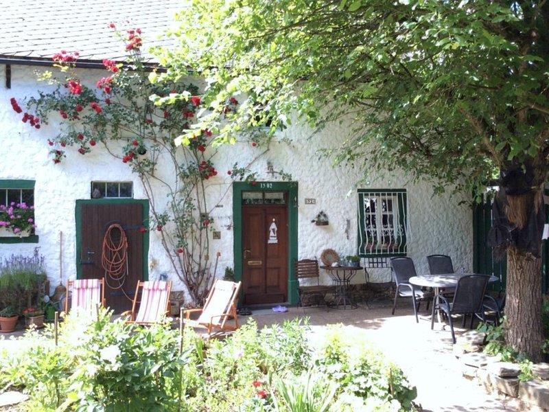 Ferienhaus zur Hexenlinde im Herzen der Vulkaneifel, holiday rental in Mullenbach