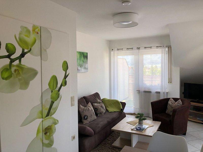 Große Ferienwohnung, 42 qm mit Balkon und 1 Schlafzimmer für max. 2 Personen, alquiler vacacional en Radolfzell am Bodensee