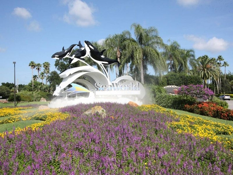 Sea World is one of many fun Attractions in Orlando.