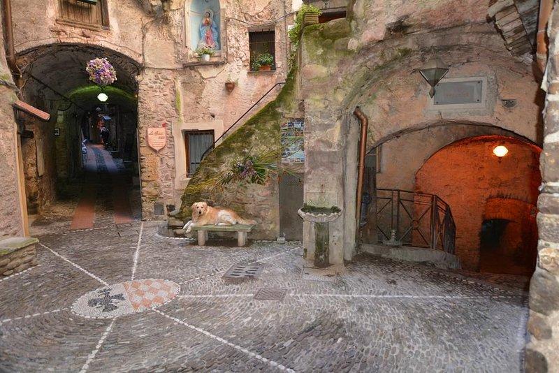La Casetta di Vale - CodCitra 008029-BEB-0022, holiday rental in Castel Vittorio