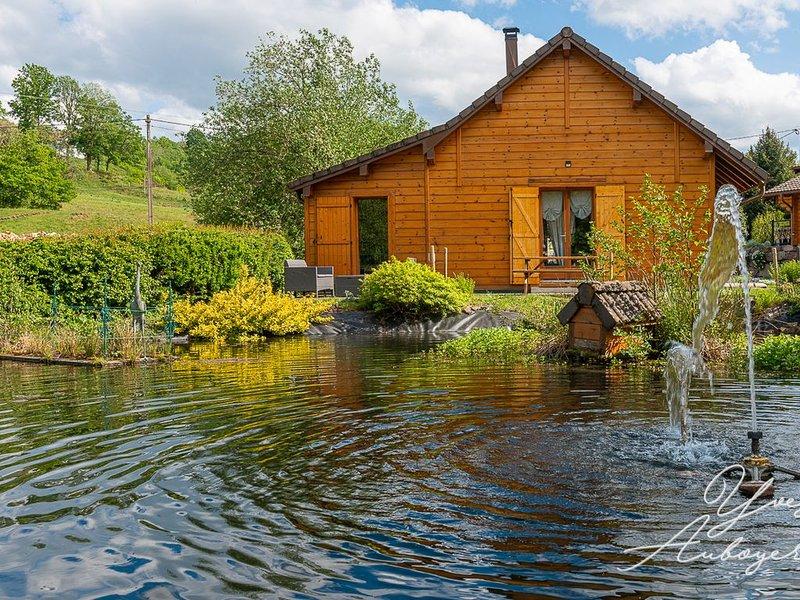 Charmant petit chalet au bord de l'eau, vacation rental in Le Thillot